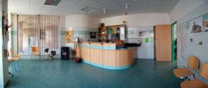 V prostorné čekárně se nachází recepce s prodejem vitamínů, léků a krmiv.